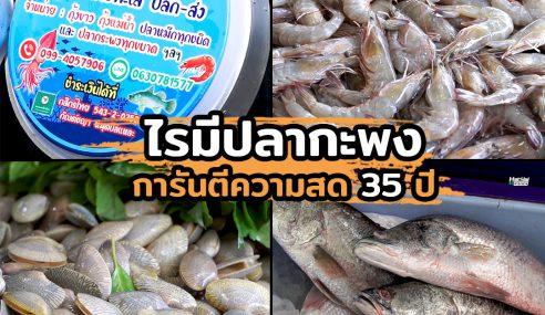 ไรมีปลากะพง | Sogood RV